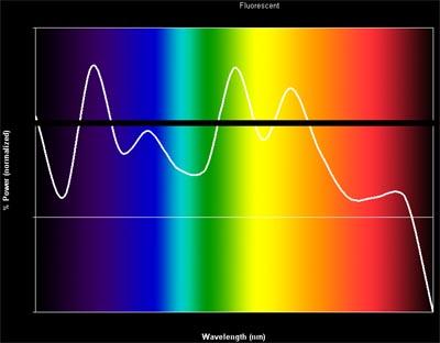 fluorescent bulb spectrum