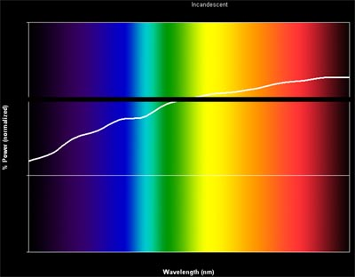 incandescent bulb spectrum